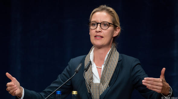 In Weidels Kreisverband: AfD soll 2017 illegale Großspenden angenommen haben