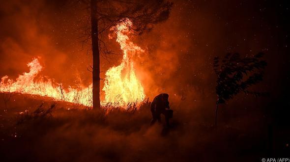 Waldbrand in Portugal nicht unter Kontrolle