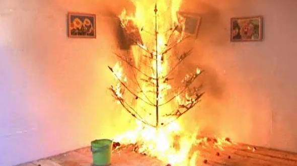 Wien: Mann wirft brennenden Christbaum vom Balkon