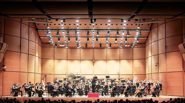 Giuseppe Verdi - Sinfonie E Preludi Da Opere