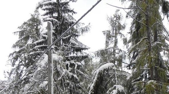Schnee Strommasten