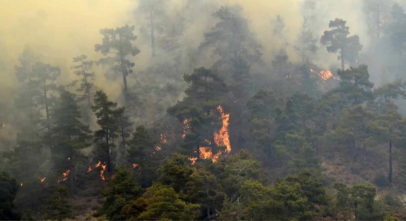 Griechenland: Mehr als 50 Waldbrände ausgebrochen